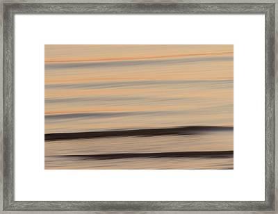 A Flying Gull Over The Lake Framed Print by Phil Schermeister