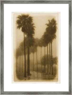Framed Print featuring the photograph A Foggy Day by Joseph Hollingsworth