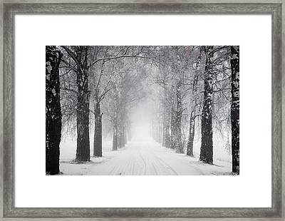 A Foggy Day Framed Print by Thomas Berger