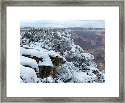A Foot At The Canyon Framed Print by Laurel Powell