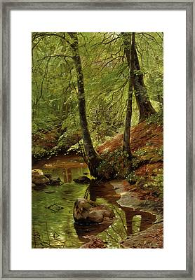 A Forest Stream Framed Print