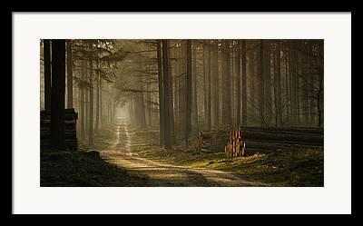 Intrigue Photographs Framed Prints