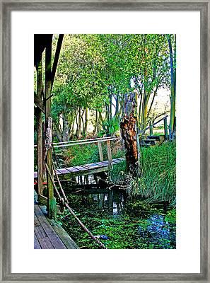 A Forgotten Delta Dock Framed Print