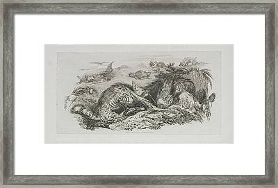 A Fox Framed Print