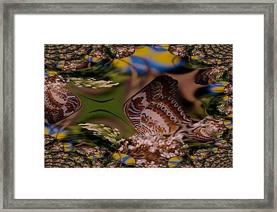 A Fractual Butterfly Framed Print by Jeff Swan