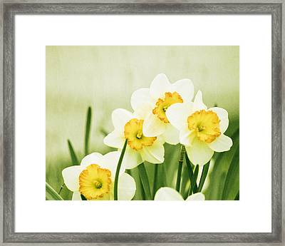 A Fresh Start Framed Print by Carolyn Cochrane