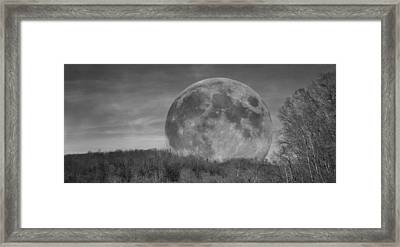 A Friend At Night Framed Print