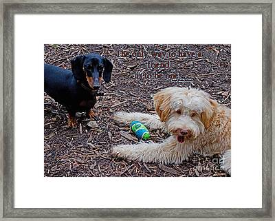A Friend Framed Print by Sandra Clark