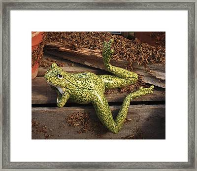 A Frog's Life Framed Print by Patrice Zinck