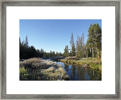 A Frosty Morning Along Obsidian Creek Framed Print