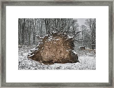 A Frozen Heart Framed Print by Gene Krasko