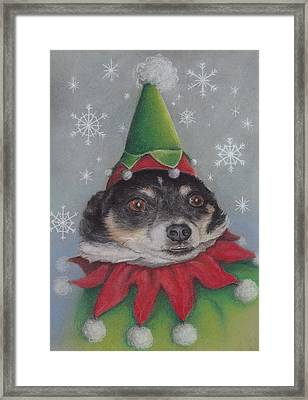 A Furry Christmas Elf Framed Print by Pamela Humbargar