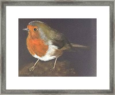 A Garden Friend Framed Print