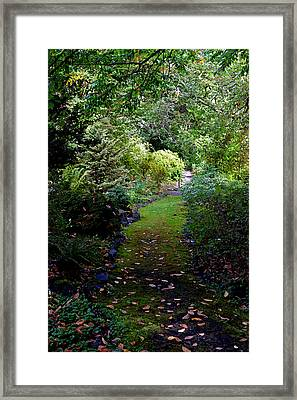 Framed Print featuring the photograph A Garden Path by Anthony Baatz