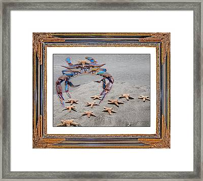 A Gathering Of Stars Framed Print by Betsy Knapp