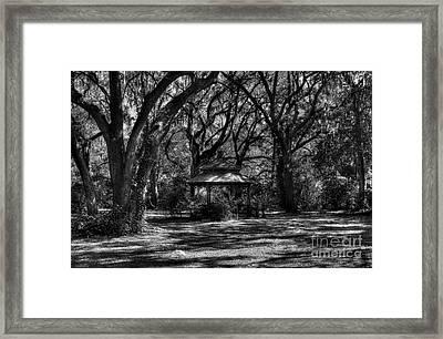 A Gazebo In The Woods Bw Framed Print by Mel Steinhauer