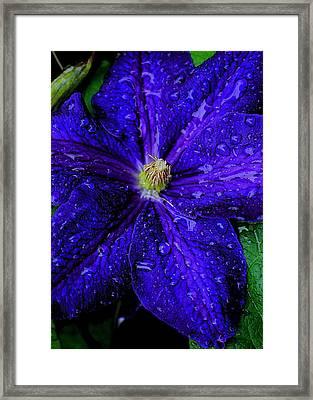 A Gentle Rain Framed Print by Frozen in Time Fine Art Photography
