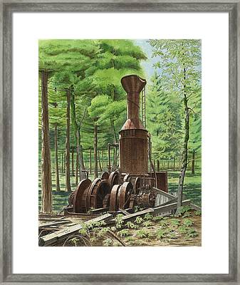 A Ghost In The Forest Framed Print
