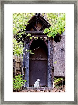A Ghost In The Potting Shed Framed Print by John Carroll