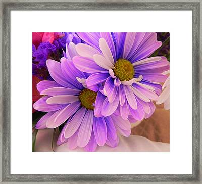 A Gift Framed Print by Peggy Stokes