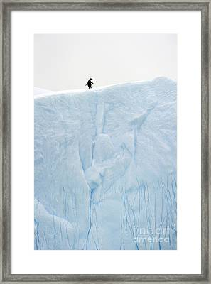 A Gigantic World... Framed Print by Nina Stavlund