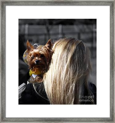 A Girl And Her Dog Framed Print