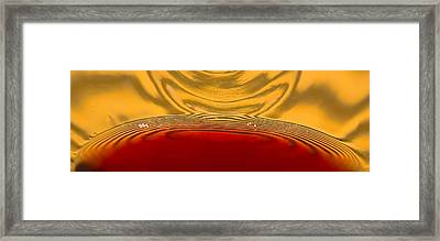 A Glass Of Wine-backlit With Blinds-and Wow Framed Print by Gary Holmes