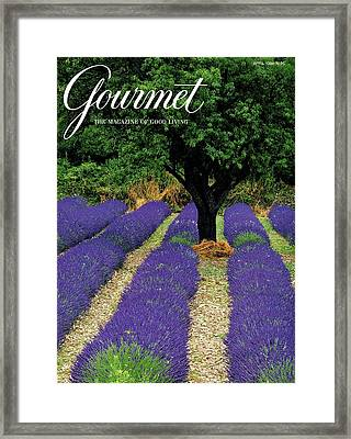 A Gourmet Cover Of A Lavender Field Framed Print by Julian Nieman