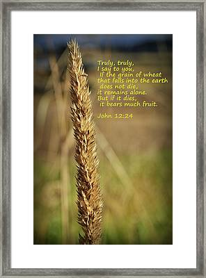 A Grain Of Wheat Framed Print
