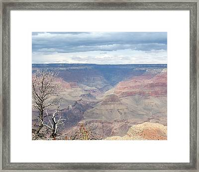 A Grand Canyon Framed Print by Laurel Powell