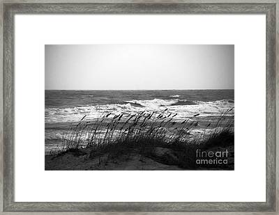 A Gray November Day At The Beach Framed Print by Susanne Van Hulst