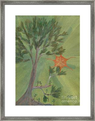 A Great Tree Grows Framed Print by Robert Meszaros