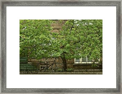 A Guardian In The Rain Framed Print