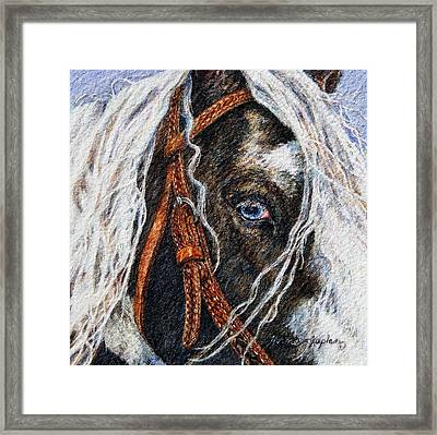 A Gypsy's Blue Eye Framed Print