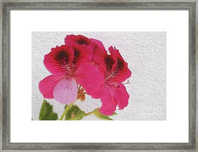 A Happy Couple Framed Print by Claudia Ellis