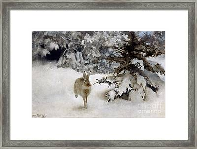 A Hare In The Snow Framed Print by Bruno Andreas Liljefors