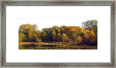 Framed Print featuring the photograph A Harvest Of Color by I'ina Van Lawick