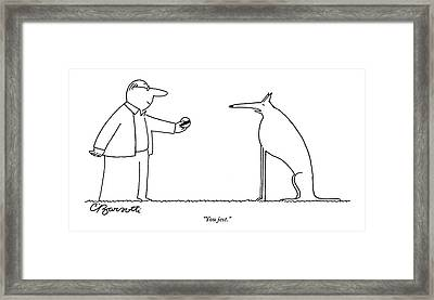 A Haughty-looking Dog Refuses To Play Fetch Framed Print