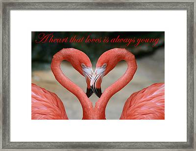 A Heart That Loves Is Always Young Framed Print