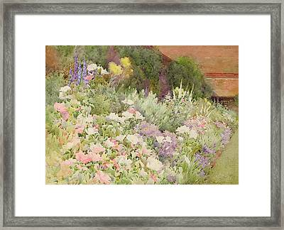 A Herbaceous Border Framed Print