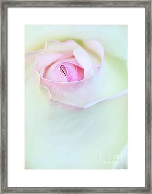 A Hint Of Pink Framed Print by Sabrina L Ryan