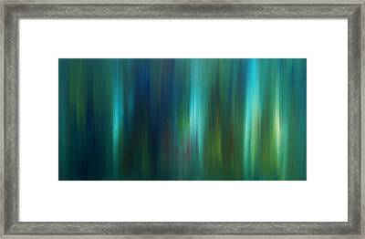 A Hint Of Spirit's True Beauty Framed Print by David  Seacord