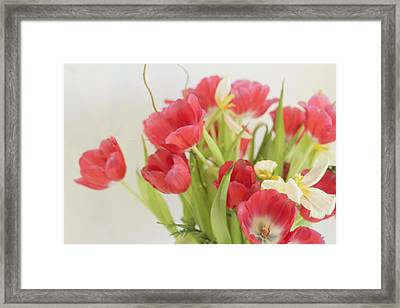 Framed Print featuring the photograph A Hint Of Spring by Rosemary Aubut