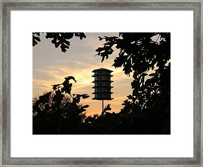 A Home Among The Trees Framed Print by Jean Goodwin Brooks