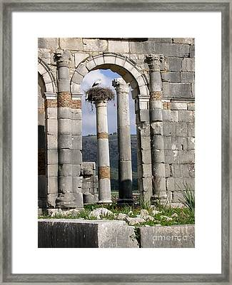 A Home In Ruins Framed Print by Sophie Vigneault