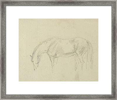 A Horse Grazing  Framed Print by Sawrey Gilpin