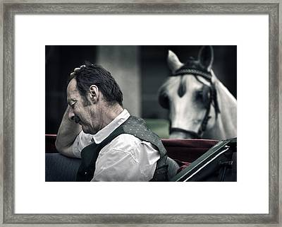 A Horse Is A Horse Is A Horse Of Course Framed Print