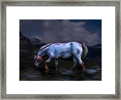 A Horse Of Many Colors Framed Print by Tyler Robbins