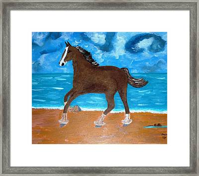 A Horse On The Beach Framed Print