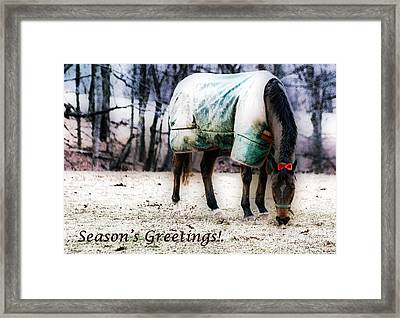 Framed Print featuring the photograph A Horse's Season's Greeting Card by Polly Peacock
